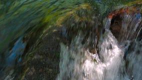 迅速地落小河的水 特写镜头射击与 股票视频
