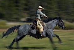 过去骑马 免版税库存照片
