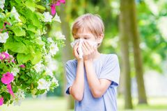 过敏 小男孩吹他的鼻子近开花的花 库存图片