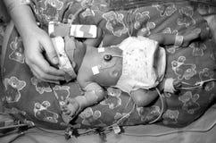 过早的婴孩 库存照片