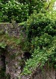 过时石墙 库存图片