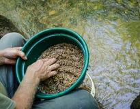 过滤并且分类与金子摇摄量词平底锅的矿物肥沃土壤 免版税库存照片