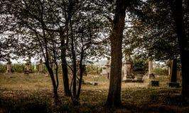 过去哥特式公墓的遗产 免版税库存照片