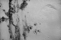 过份湿气可能导致模子和削皮油漆墙壁,这样a 免版税库存图片