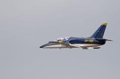 过去L-39 Albatros飞行 免版税库存图片