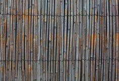 年迈的干燥芦苇一定与金属线 免版税库存照片