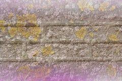 年迈的生苔砖纹理 库存图片