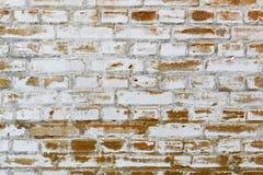 年迈的砖墙纹理背景  免版税库存图片