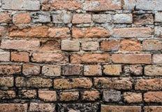 年迈的砖墙纹理 库存照片