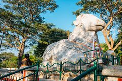 迈索尔Sri楠迪寺庙在印度 库存照片