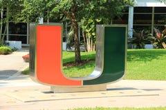 迈阿密大学 库存图片