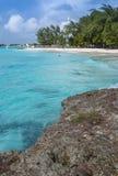 迈阿密海滩加勒比巴巴多斯 免版税库存图片