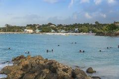 迈阿密海滩巴巴多斯的游泳者 免版税库存图片