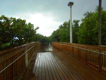 迈阿密海滩木板走道 库存图片