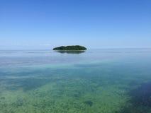 迈阿密海滩钥匙Biscaney,美国 图库摄影