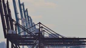 迈阿密起重机口岸  股票录像