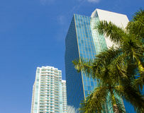 迈阿密,美国 与棕榈和摩天大楼的热带风景 库存照片