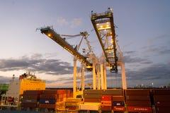 迈阿密,美国- 2016年3月01日:起重机和在口岸堆积的货箱 容器口岸或终端有夜照明的 船 免版税图库摄影