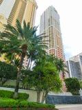 迈阿密,美国- 5月07,2018 :与棕榈树的现代公寓在林斯大道 库存图片