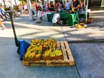 迈阿密,美国- 5月07,2018:林肯路星期天的新农夫市场 免版税库存图片