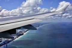 迈阿密 免版税库存图片