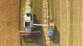 运作在领域的收割机和割麦子 乌克兰 录影4K 股票视频