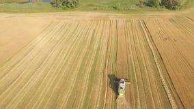 运作在领域的收割机和割麦子 乌克兰 录影4K 股票录像