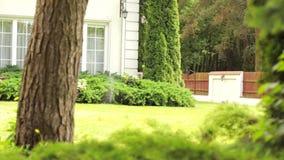 运作的草坪供水系统在豪宅后院 影视素材