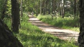 运动员人通过自行车的森林驾驶 健康生活方式 股票视频