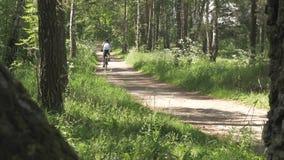 运动员人通过自行车的森林驾驶 健康生活方式 股票录像