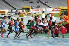 运动员在最终1500的米中竞争 免版税库存图片