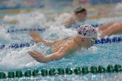 运动员在游泳竞争中 库存照片