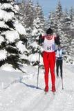 运动员在积雪的风景的人滑雪横越全国的连续冬天竞争中与树 免版税库存图片