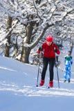运动员在积雪的风景的孩子滑雪横越全国的连续冬天竞争中 库存照片