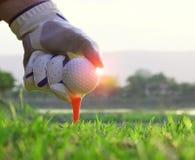 运动员在领域安置了高尔夫球下来 库存照片