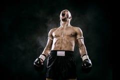 运动员庆祝在拳击笼子的泰拳拳击手至善至美的胜利 隔绝在与烟的黑背景 复制 库存图片
