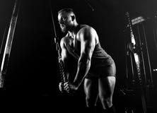 运动员执行在三头肌的一锻炼在特别dev 免版税库存图片