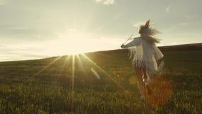 运动女孩到处乱跑到明亮的日落、绿色草坪和自由空间  慢的行动 生活beautifulness 股票视频