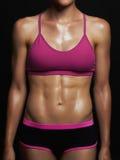 运动女孩身体 健身房概念 肌肉健身妇女 健康生活方式 库存图片