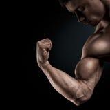 运动肌肉手特写镜头  免版税库存图片
