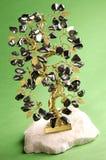 运气结构树 图库摄影