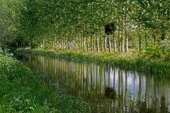 运河反射, bridgewater,对,汤顿,运河,萨默塞特, U K 免版税库存图片