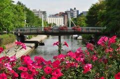 运河在有桃红色花的Ruoholahti在前面 免版税库存图片
