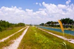 运河堤坝 免版税图库摄影