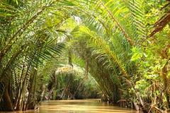 运河,湄公河三角洲,越南 库存照片