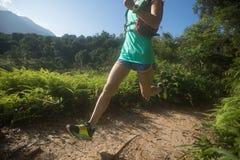 运行在早晨森林里的足迹赛跑者 图库摄影