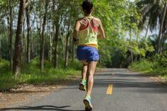 运行在早晨热带森林足迹的赛跑者 免版税库存照片