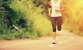 运行在森林足迹的妇女赛跑者 免版税库存照片