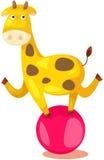 运行在球的马戏长颈鹿 免版税图库摄影