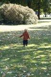 运行在秋天公园的小孩 免版税库存照片